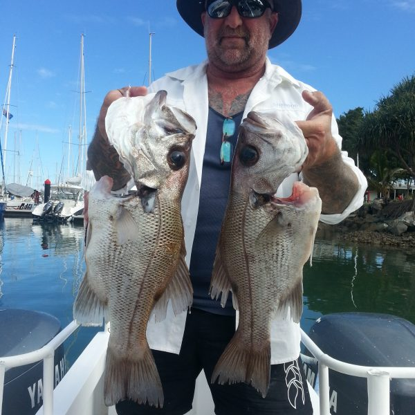 Great fishing off the Sunshine Coast on a charter