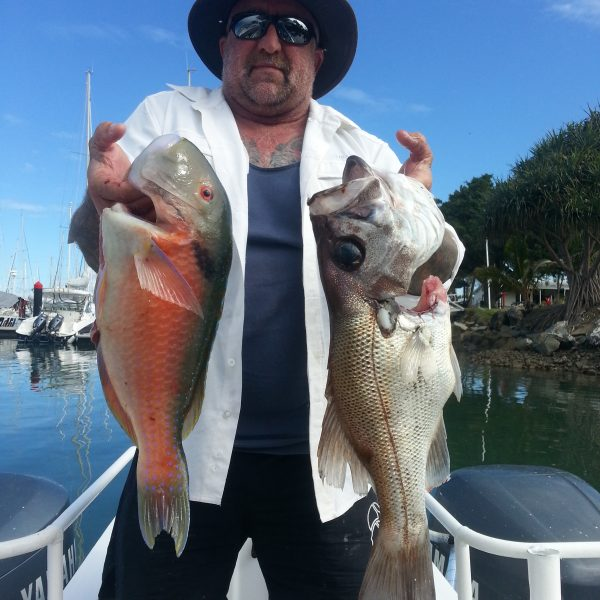 The Catch of the day on a Sunshine Coast fishing tour