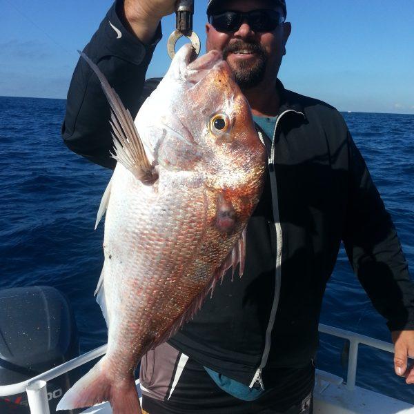 Sunshine Coast fishing charters