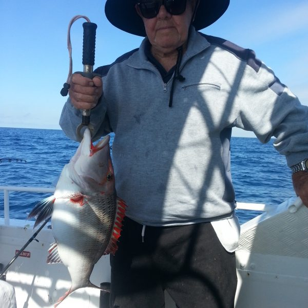 Mooloolaba fishing charters catch of the day.
