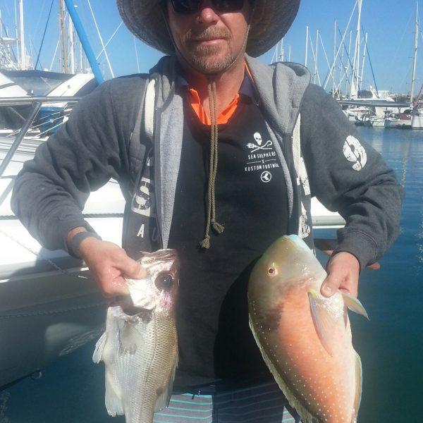 Catching fish on the Sunshine Coast