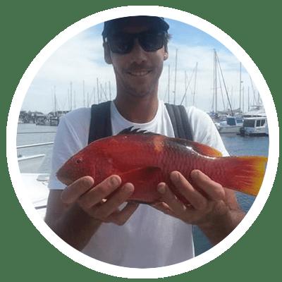 Wrasse caught off the Sunshine Coast